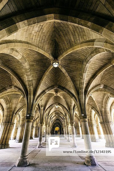 View of cloisters between the quadrangles at Glasgow University   Scotland  United Kingdom.
