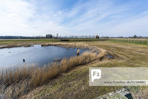 Schokland  Netherlands. The former Zuiderzee / IJselmeer island Schokland became common land since the impoldering  which started in the 1940's and 1950's. Where it was first surrounded by sea and water  it is now reachable over land. Therefor it became a unique UNESCO World Herritage Site  attracting lot's of tourists.