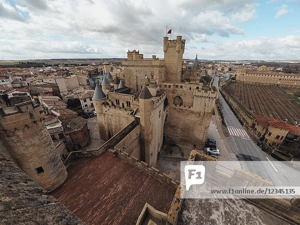 Olite medieval castle  in Navarre  Spain. This medieval building is amazing  you can visit it all the year. Near there is a small desert called Bardenas.