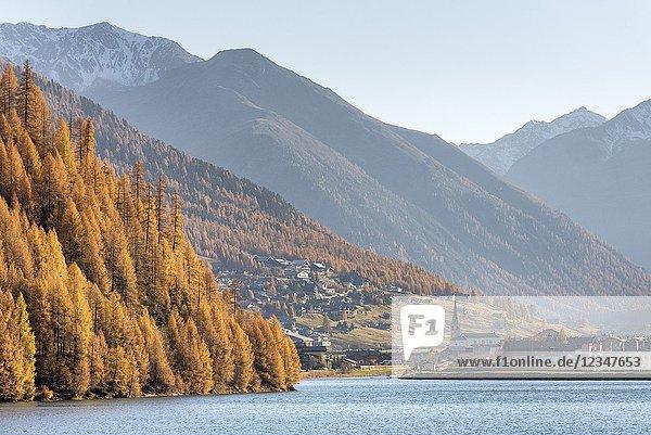The lake of Livigno in autumn  Province of Sondrio  Lombardy  Italy  European.