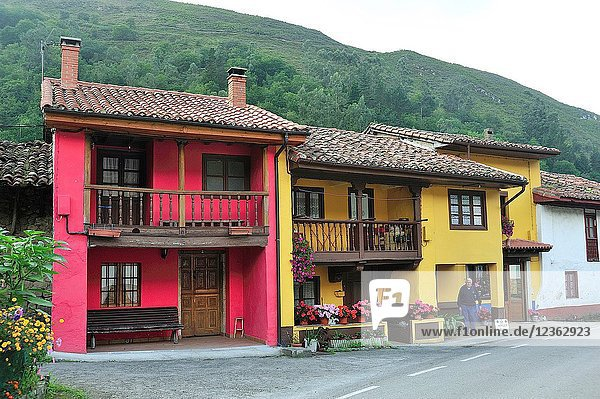 Espinaredo town,  Concejo de Piloña,  Asturias,  Spain