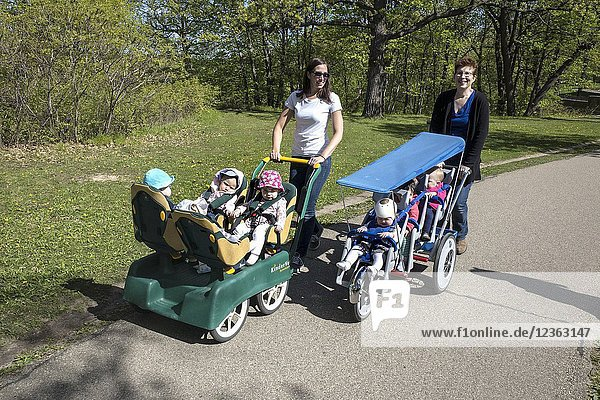 Daycare woman taking a walk with toddlers in multi fit strollers. North Mississippi River Boulevard. St Paul Minnesota MN USA.