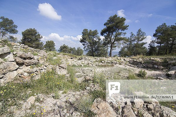 Ruins of la Bastida de les Alcusses  one of the most important Iberian archaeological sites in the Valencian Community  Moixent  Spain