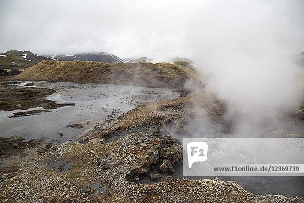 Fumaroles near Reikjiavik in Iceland.
