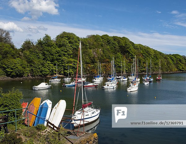 Yachts in harbour at Aberdour village in Fife  Scotland  UK.