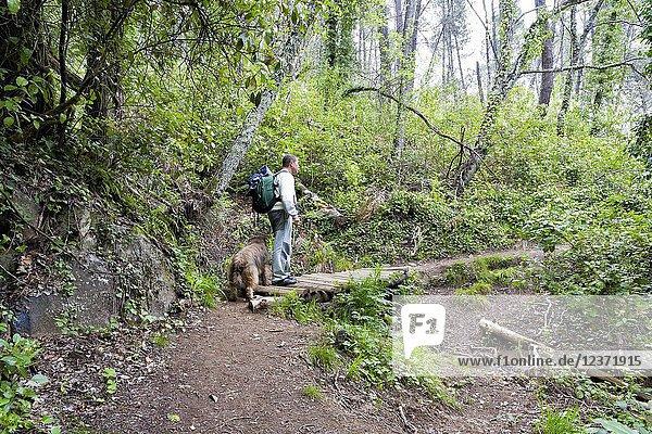 Man walking with a dog by the Fishermen Path. Arenas de San Pedro. Avila. Spain