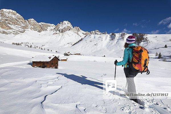 A girl is looking at Fuciace  a small village in Dolomites near San Pellegrino Pass (Soraga di Fassa  Biois Valley  Trento province  Trentino-Alto Adige  Italy  Europe).