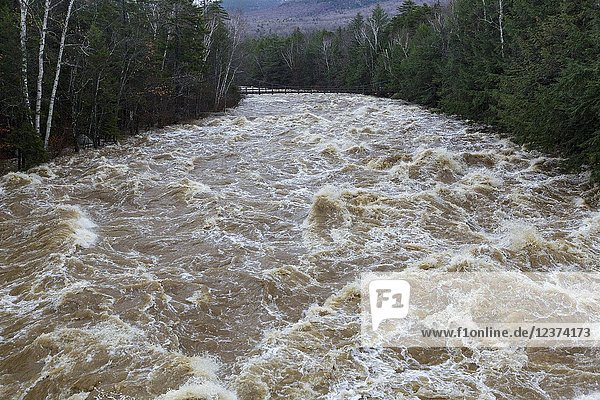 The East Branch of the Pemigewasset River near the Lincoln Woods Trailhead along Route 112 in Lincoln  New Hampshire on October 30  2017 after hours of heavy rain and strong winds.