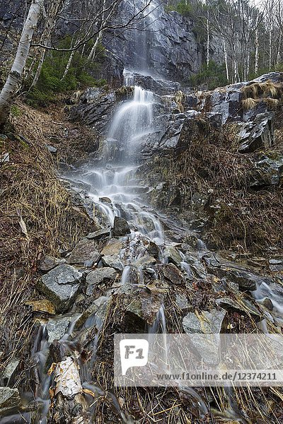 A seasonal waterfall on the western flank of Mount Lafayette in Franconia Notch  New Hampshire during a rainy spring day. Most of the seasonal waterfalls on the western flank of Mount Lafayette are high on the mountainside and are difficult to reach.
