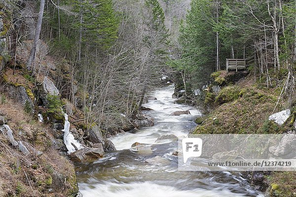 Looking downriver at the feature known as 'The Pool' from Sentinel Pine Covered Bridge in Franconia Notch State Park in Lincoln  New Hampshire during the spring months. This footbridge crosses over the Pemigewasset River. The wooden platform on the right is an observation platform.