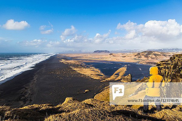 Solheimfjara beach from Dyrholaey viewpoint  southern Iceland.