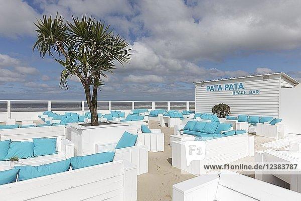 Strandbar mit Palme an der belgischen Küste  Westende  West-Flandern  Belgien  Europa