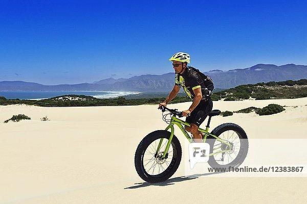 Mountainbiker mit Fatbike in Sanddüne  Radtour am Die Plaat Beach  Nature Reserve  De Kelders  Gansbaai  Westkap  Südafrika