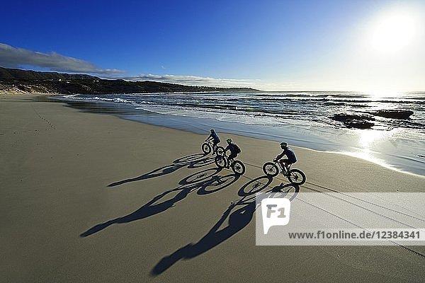 Mountainbiker mit Fatbikes am Sandstrand  lange Schatten  Radtour am Die Plaat Beach  Nature Reserve  De Kelders  Gansbaai  Westkap  Südafrika