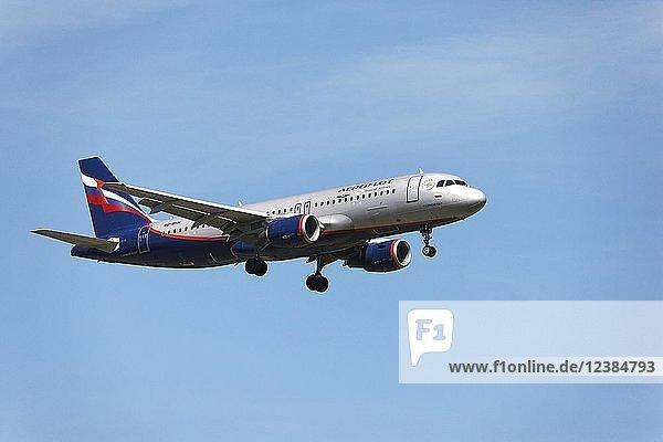 Aeroflot Airbus A320 passenger aircraft  on landing approach to Franz Josef Strauss Airport  Munich  Upper Bavaria  Germany  Europe
