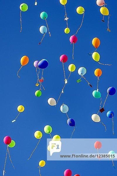 Bunte Luftballons steigen zum Himmel  Bad Homburg vor der Höhe  Hessen  Deutschland  Europa