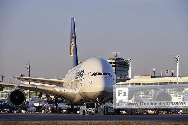 Lufthansa  Airbus  A380-800  mit Push Back Truck schleppen von Position auf Rollweg vor Satellitengebäude (Terminal 2)  Abendstimmung  Flughafen München  Oberbayern  Bayern  Deutschland  Europa