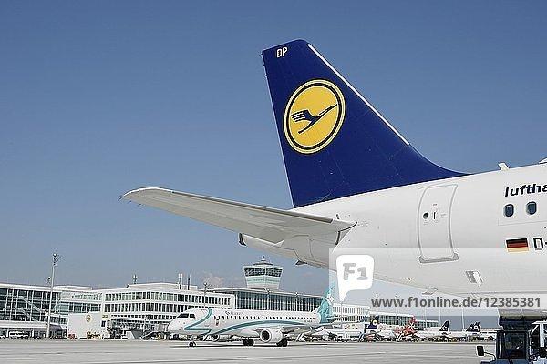 Blick auf das Vorfeld Ost  mit Lufthansa und Air Dolomiti  Terminal 2  Flughafen München  Oberbayern  Bayern  Deutschland  Europa