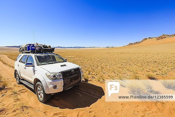 Geländewagen im Hartmannstal  Region Kunene  Namibia  Afrika