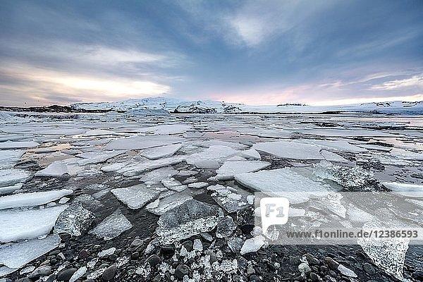 Ice floes  glacier Jökulsárlón lagoon  glacier lake  sunset  southern edge of Vatnajökull  southeast Iceland