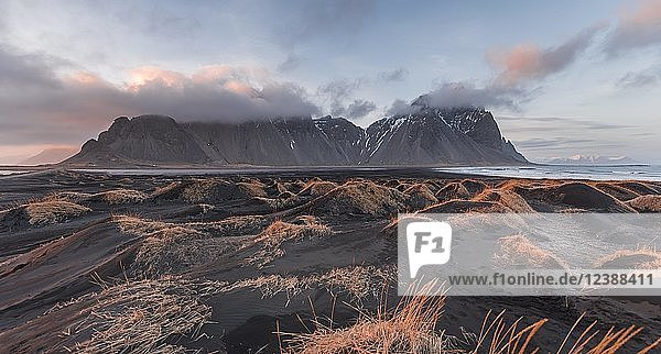 Evening atmosphere at the lava beach  black sandy beach with dunes  overgrown with dry grass  mountains Klifatindur  Eystrahorn and Kambhorn  headland Stokksnes  mountain range Klifatindur  Austurland  East Iceland  Iceland  Europe