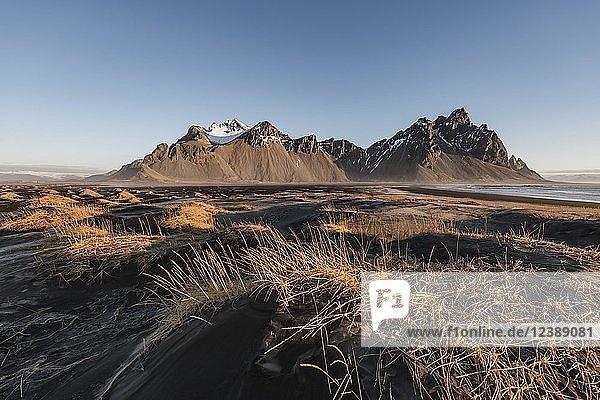 Lava beach  black sand beach  overgrown dunes  mountains Klifatindur  Eystrahorn and Kambhorn  headland Stokksnes  massif Klifatindur  Austurland  East Iceland  Iceland  Europe