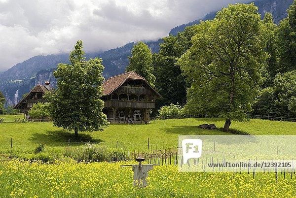 Scarecrow in a meadow in front of farmbuildings in the open air museum Ballenberg near Brienz in Switzerland.