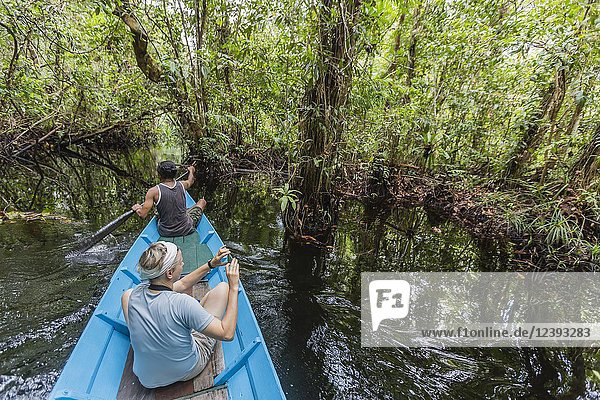 Local ranger in canoe on the Sekonyer River  Tanjung Puting National Park  Borneo  Indonesia.