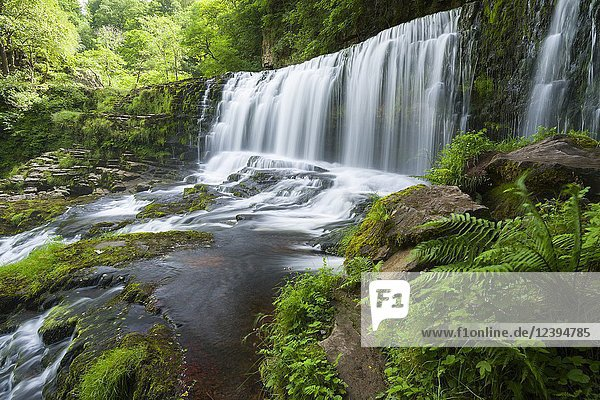 Sgwd Isaf Clun-gwyn Lower (Fall of the White Meadow Fall) waterfall on the Afon Mellte river in the Brecon Beacons National Park near Ystradfellte  Powys  Wales.