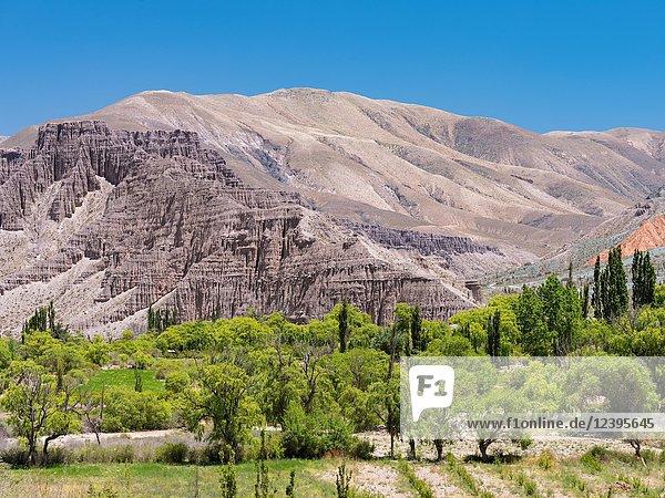 Valley of river Rio Pumamarca  a tributary to the Quebrada de Humahuaca. South America  Argentina  November.