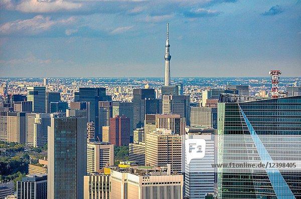 Japan  Tokyo City  Marunouchi district  Skytree Tower.