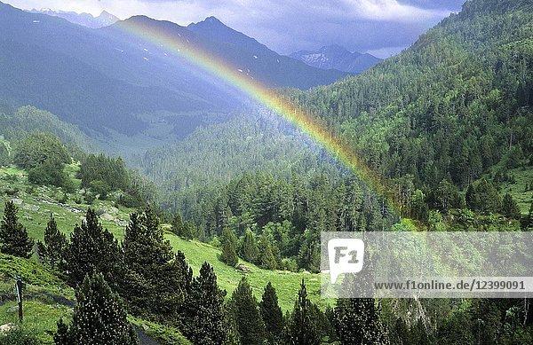 Estos Valley  Pyrenees  Huesca. Aragon. Spain.
