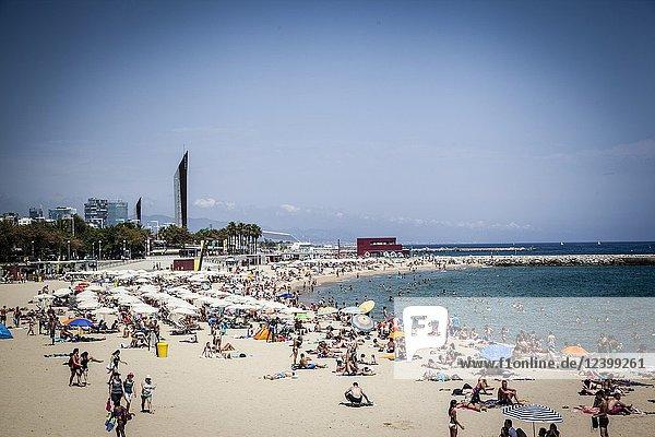 Tourists sunbathe at Barceloneta beach on a hot summer day.