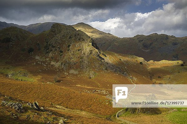 The Bell and Coniston Fells in the Lake District National Park  Cumbria  England.