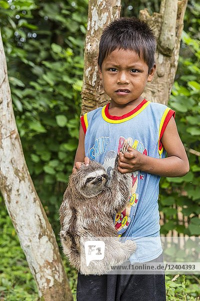 A young boy with his 'pet' brown-throated sloth  Bradypus variegatus  San Francisco Village  Loreto  Peru.