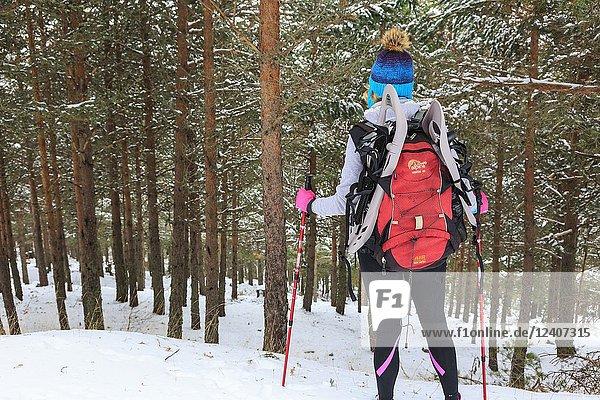 Mountaineer woman in the snow. Las Lagunas Glaciares de Neila Natural Park. Burgos  Castile and Leon. Spain  Europe.