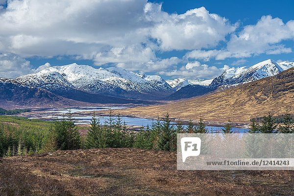 Loch Loyne  Highland  Scotland  United Kingdom  Europe.