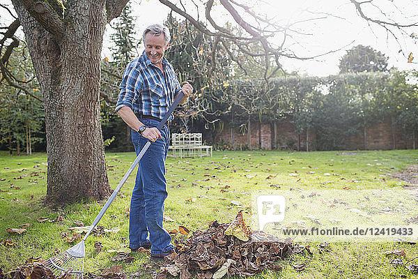 Senior man raking autumn leaves in backyard