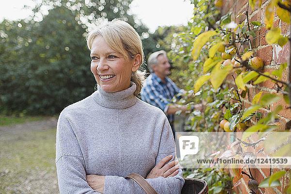 Portrait happy  confident mature woman harvesting apples in garden