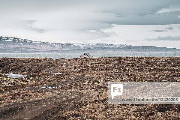 Iceland  landscape with single house