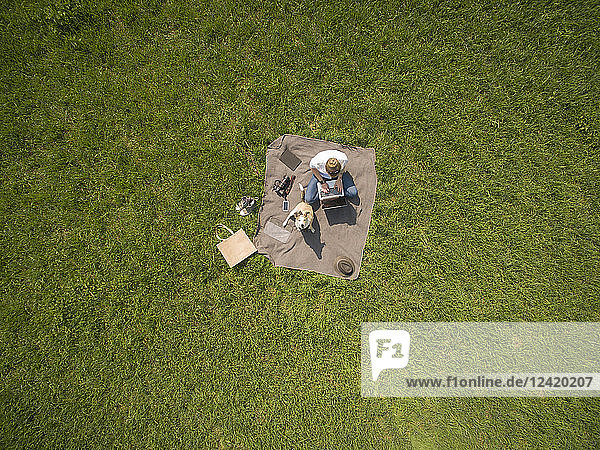 Bird's eye view of woman sitting on blanket on meadow with dog using laptop