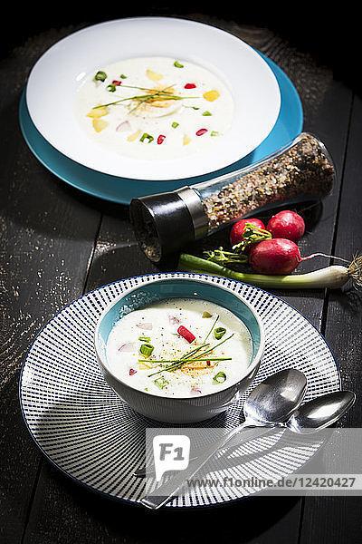 Cold soup  buttermilk sour cream potato soup with egg  radish  spring onion