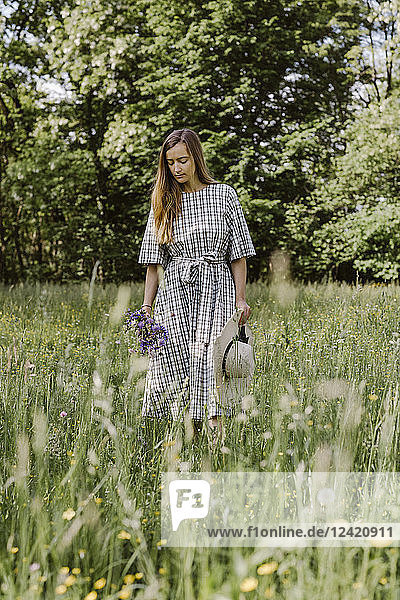 Italy  Veneto  Young woman plucking flowers and herbs in field