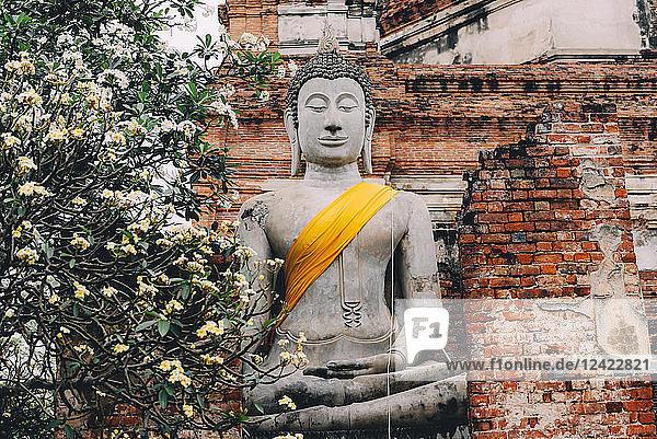 Thailand  Ayutthaya  Wat Yai Chaya Mongkhon  Buddha Statue