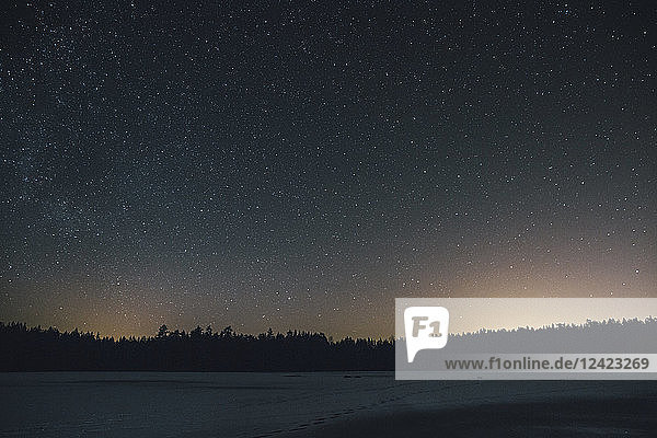 Sweden  Sodermanland  frozen lake Navsjon in winter under starry sky at night