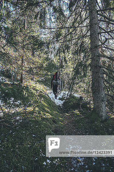 Sweden  Sodermanland  backpacker hiking in remote forest in winter