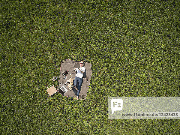 Bird's eye view of woman lying on blanket on meadow with dog using tablet