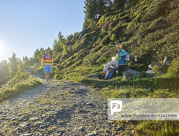 Austria  Tyrol  Couple hiking the Zirbenweg at the Patscherkofel  meeting at a bench