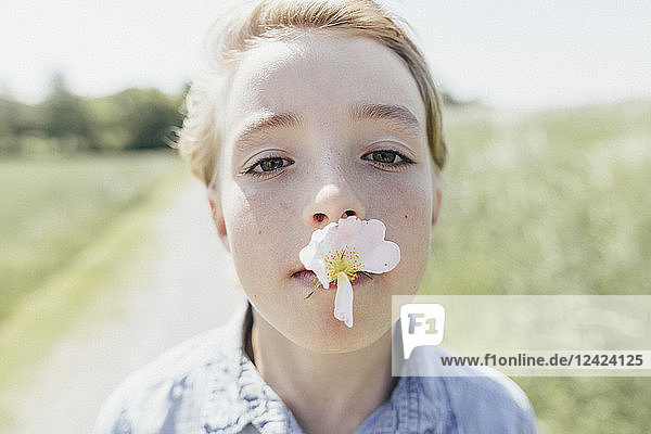 Portrait of boy with blossom in his mouth
