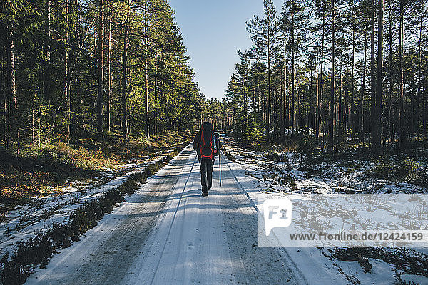 Sweden  Sodermanland  backpacker hiking on path in remote forest in winter